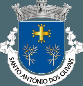 MERCADO NATAL 2019