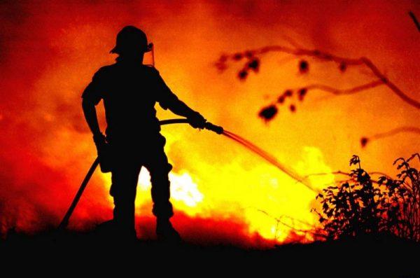 Plano Municipal de Defesa da Floresta Contra Incêndios de Coimbra