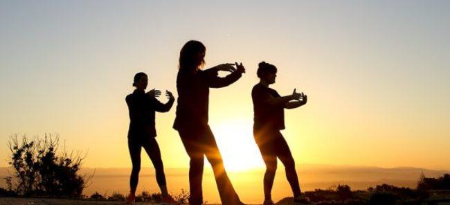 O Programa de envelhecimento ativo e saudável está de volta